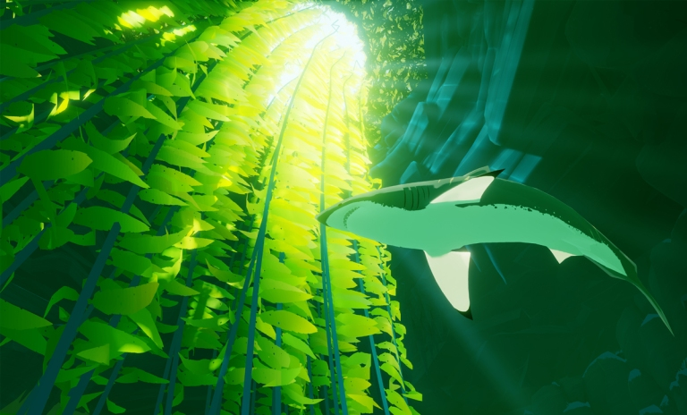 Ocean environments
